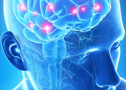 neurologia2